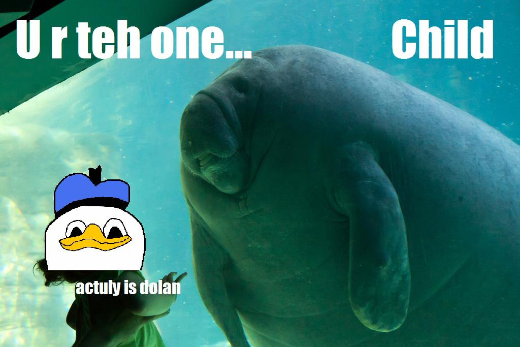 Overlord Manatee: Image Gallery   Know Your Meme
