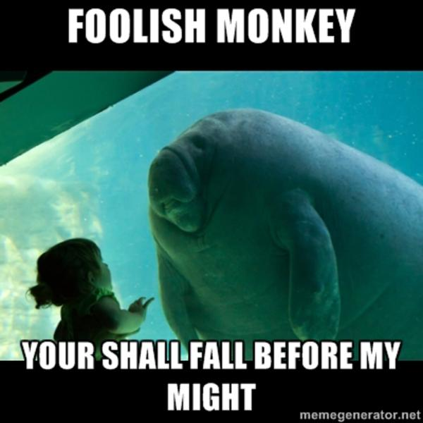 image 325933 overlord manatee know your meme