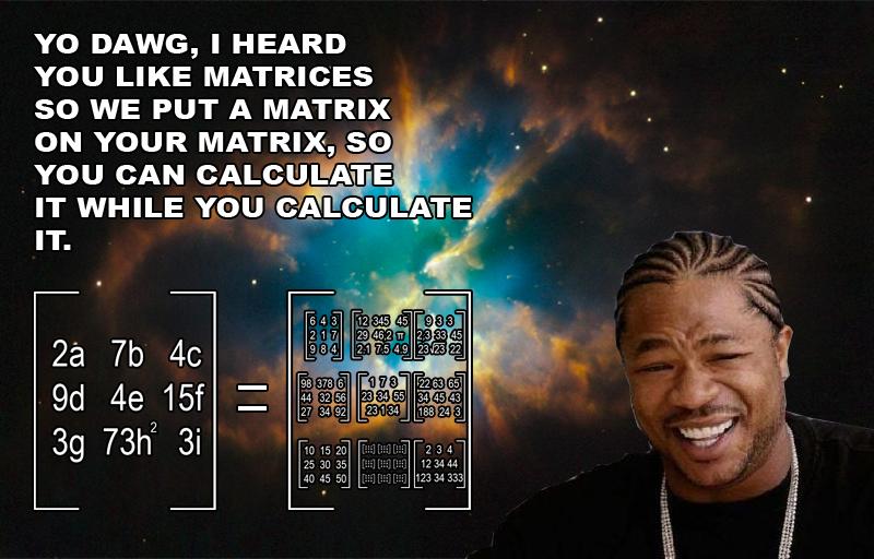 Matrices. | Xzibit Yo Dawg | Know Your Meme