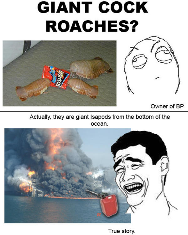 4cb image 416467] bp oil spill know your meme