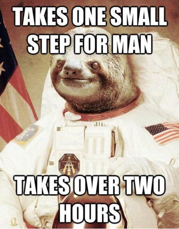 [Image - 437649] | Astronaut Sloth | Know Your Meme