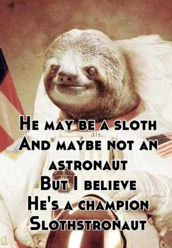 He May Be A Sloth And MaÝbe Not An Astronaut Buti Believe Hesa Champion Slothstronaut
