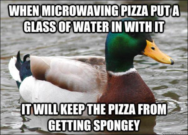 094 actual advice mallard know your meme,Duck Meme