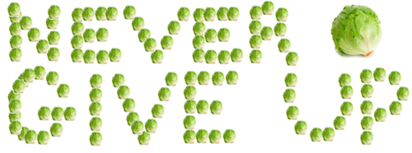 "[Image - 465474] | Lettuce / It Says ""Never Give Up ..."