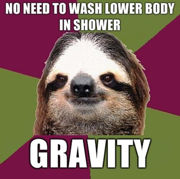 f67 sloths know your meme,Sloth Meme Images