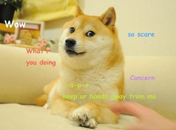 7bc doge know your meme,So Much Wow Meme