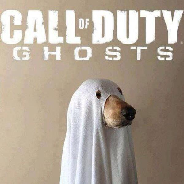 Cod ghosts dog call of duty dog know your meme df g h o s t s call of duty ghosts call of duty black ops battlefield 4 dog sciox Images