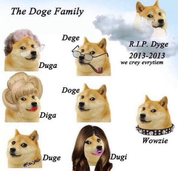 doge family | Doge | Know Your Meme