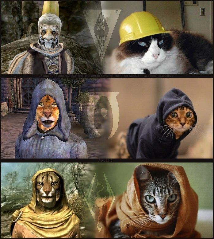 Elder Scrolls Memes - The best Elder Scrolls jokes and ...  Elder Scrolls Memes
