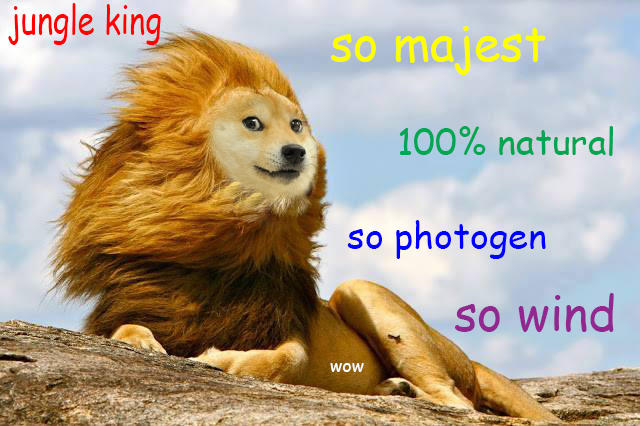 [Image - 702027] | The Lion King | Know Your Meme