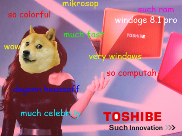 Toshibe laptop doge know your meme - Doge steam background ...