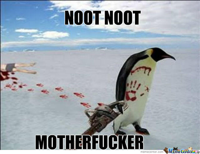 Image 768491 Noot Noot Know Your Meme