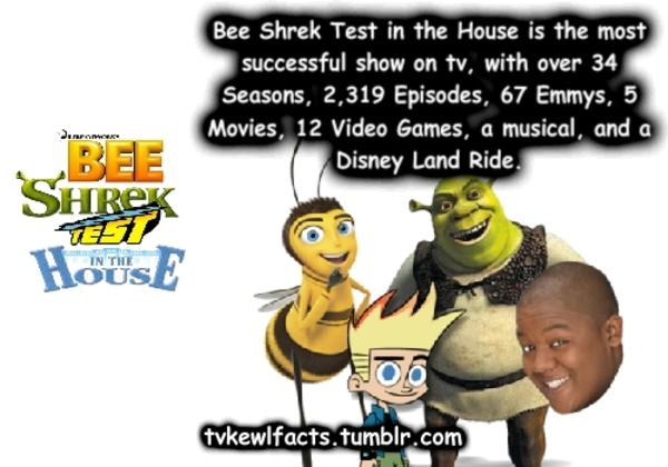 Bee Shrek Test Image