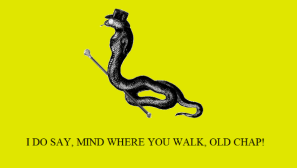 d14 gadsden flag don't tread on me know your meme
