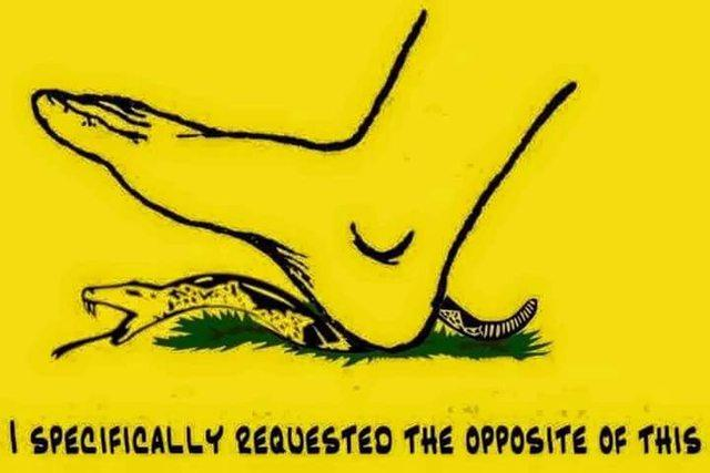 d28 the opposite gadsden flag don't tread on me know your meme