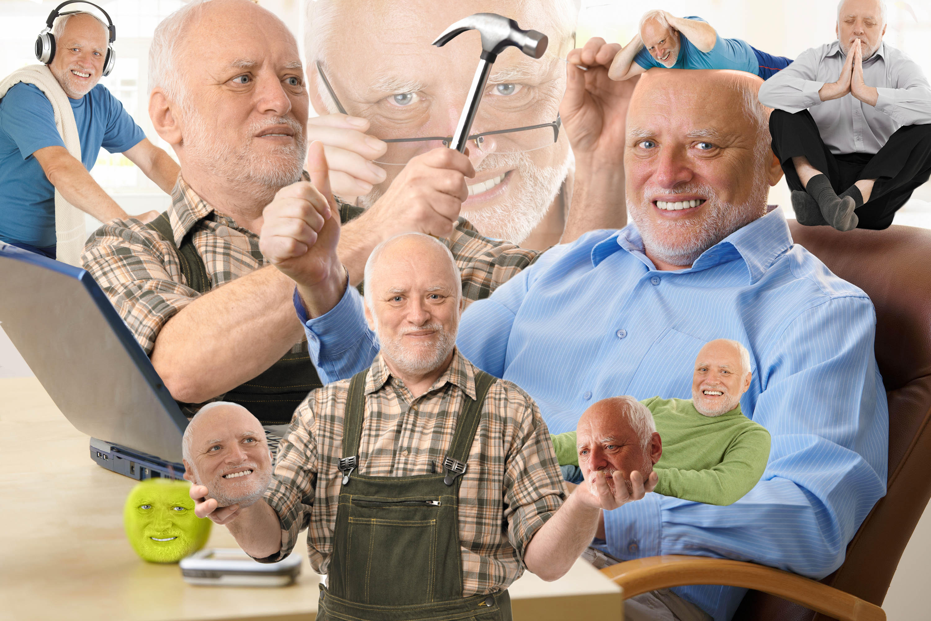 Hold The Pain Harold