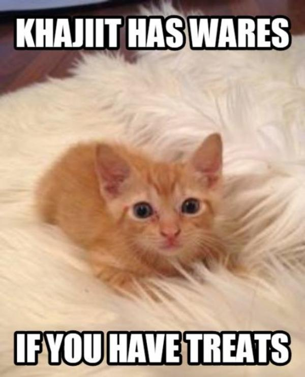 Cute Dog And Cat Pictures With Captions