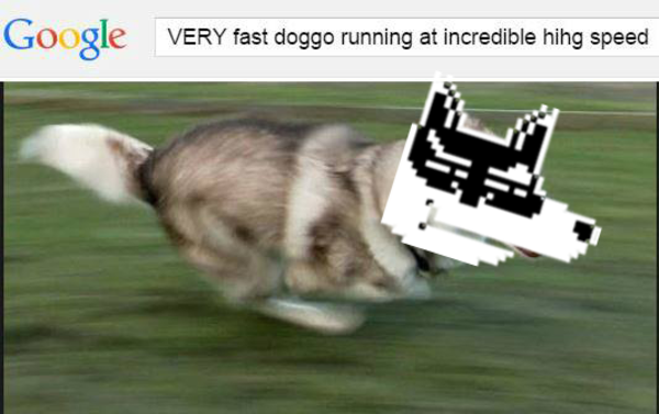 0cf very fast doggo running at incredible hihg speed know your meme
