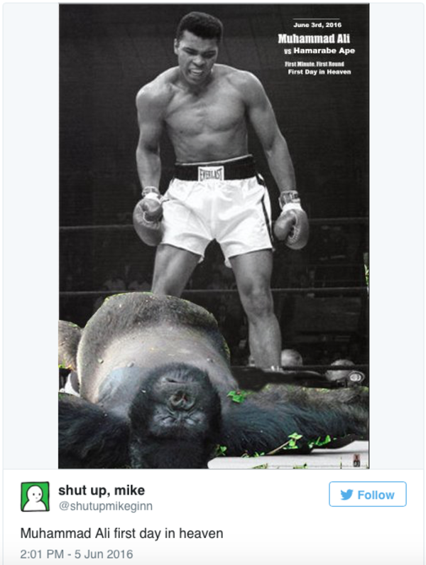 0b3 harambe the gorilla know your meme,All The Things Meme Maker