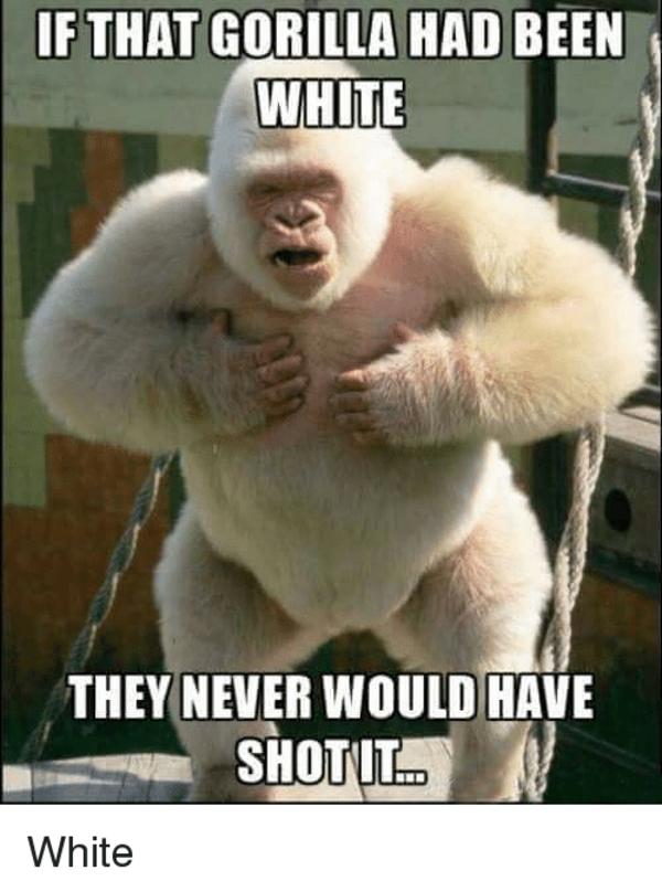 95c white harambe harambe the gorilla know your meme
