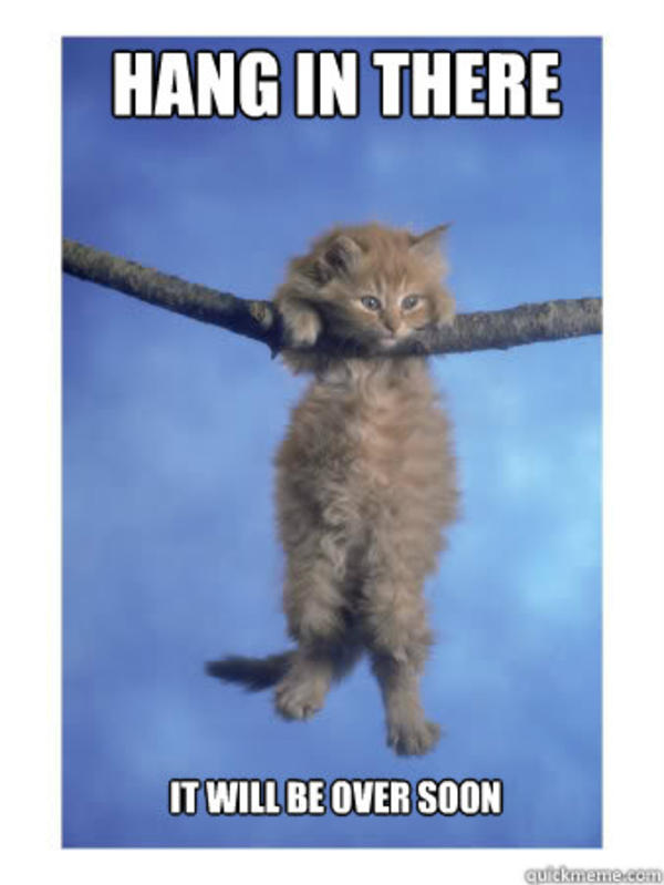 hang in there kitty hang in there baby know your meme. Black Bedroom Furniture Sets. Home Design Ideas