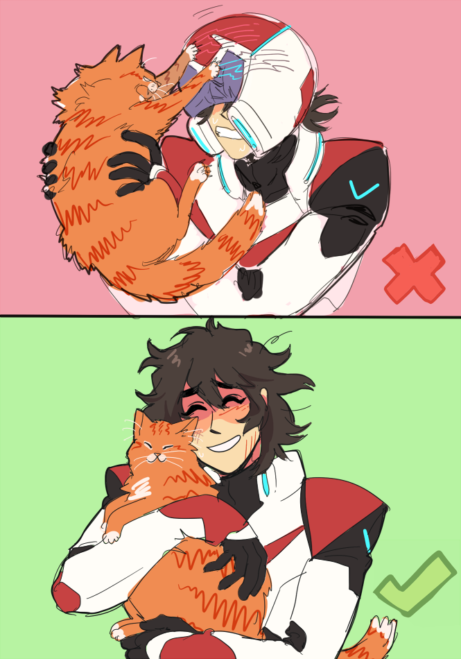 000 bonding with your magic space kitty voltron legendary defender