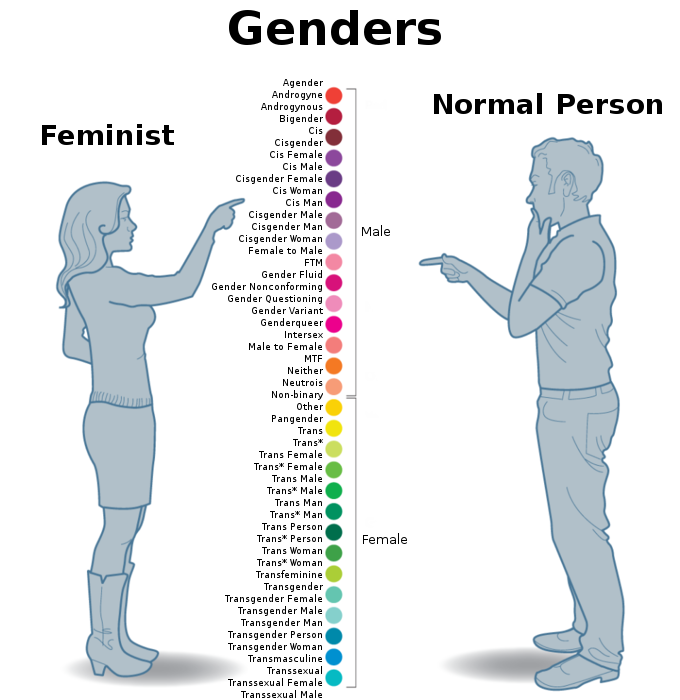 Feminist Vs Normal People Artist Vs Normal People
