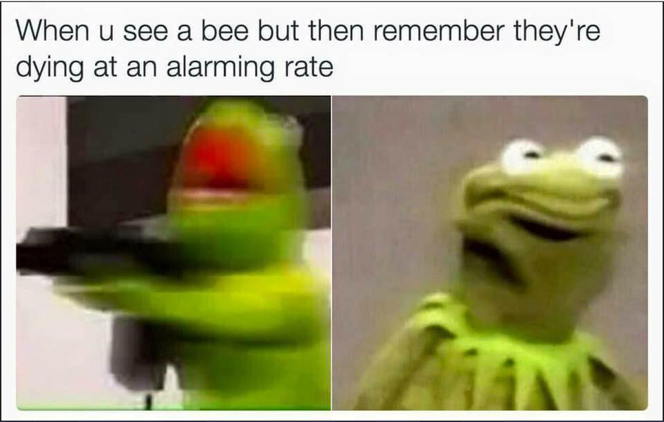 Funny Kermit The Frog: When U See A Bee But Remember They're Dying At An Alarming