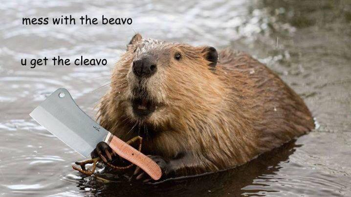 Mess With Beavo You Mess With Crabo You Get A Stabo