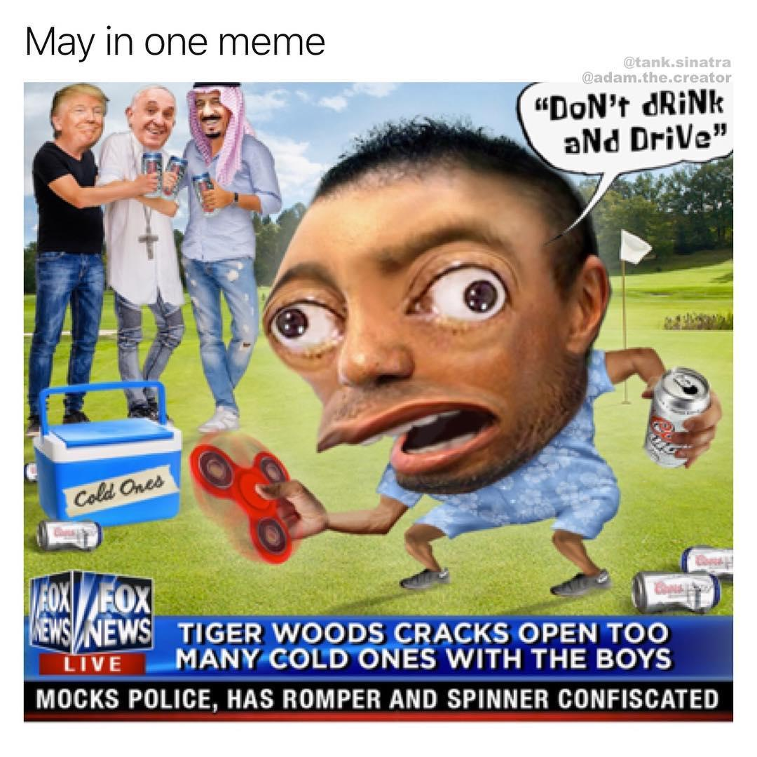 May In One Meme