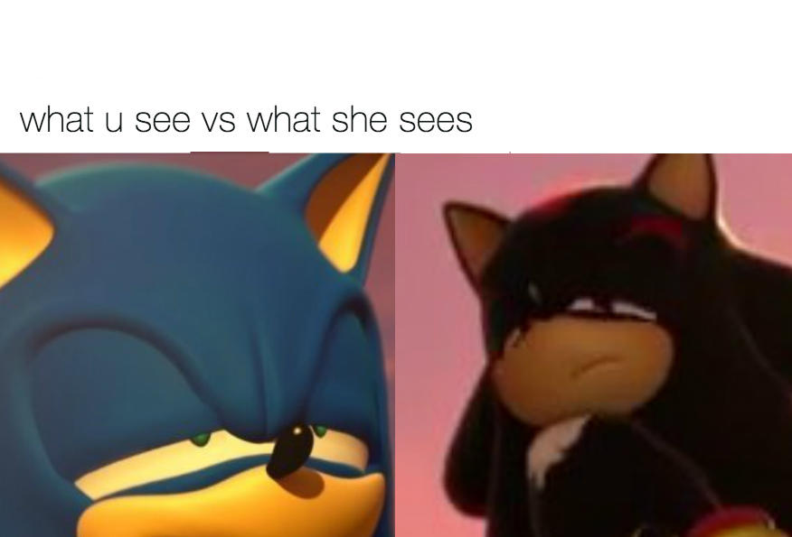 What shadow see vs what sonic sees | What You See vs. What She Sees | Know Your Meme