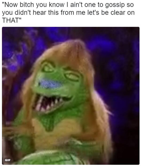 Image result for Cuca The Alligator meme
