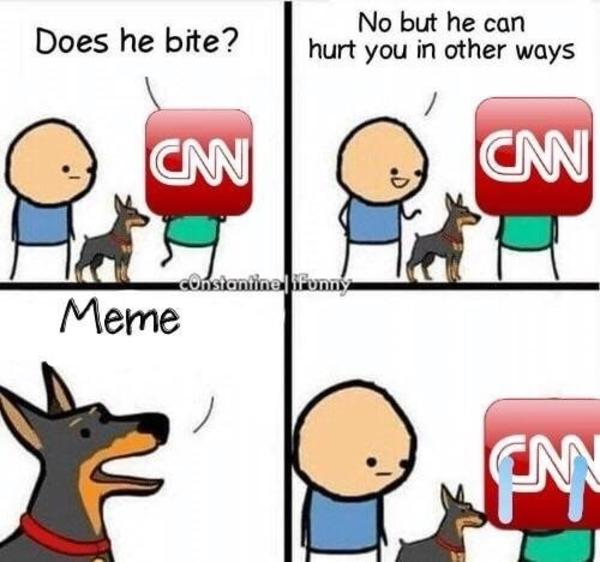 4c4 does he bite? know your meme,Does Your Dog Bite Meme