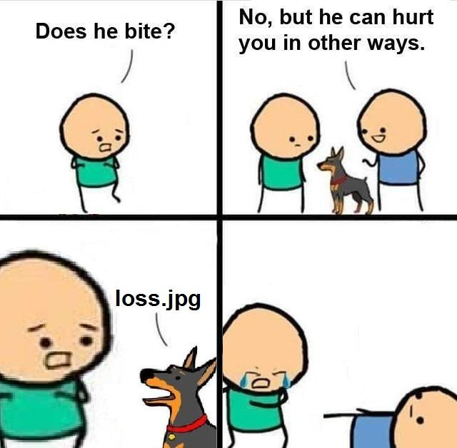 4f9 cahbortion dog jpg does he bite? know your meme,Does Your Dog Bite Meme