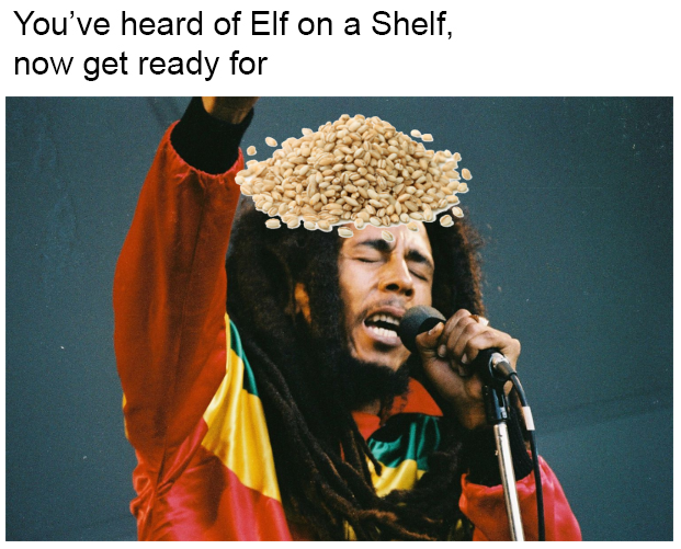 Barley on Bob Marley | You've Heard of the Elf on the ...