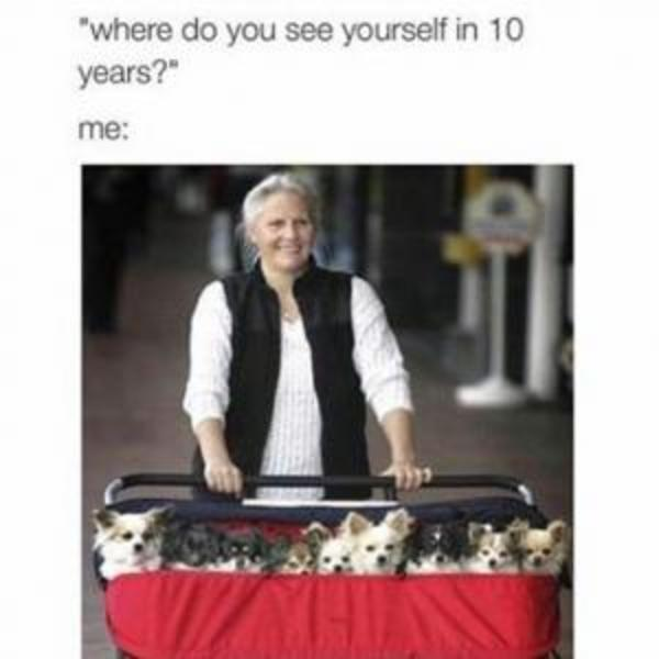 What Do You See Yourself Doing in 10 Years?