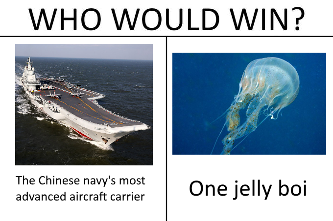 jelly boi vs lianong | Who Would Win? | Know Your Meme