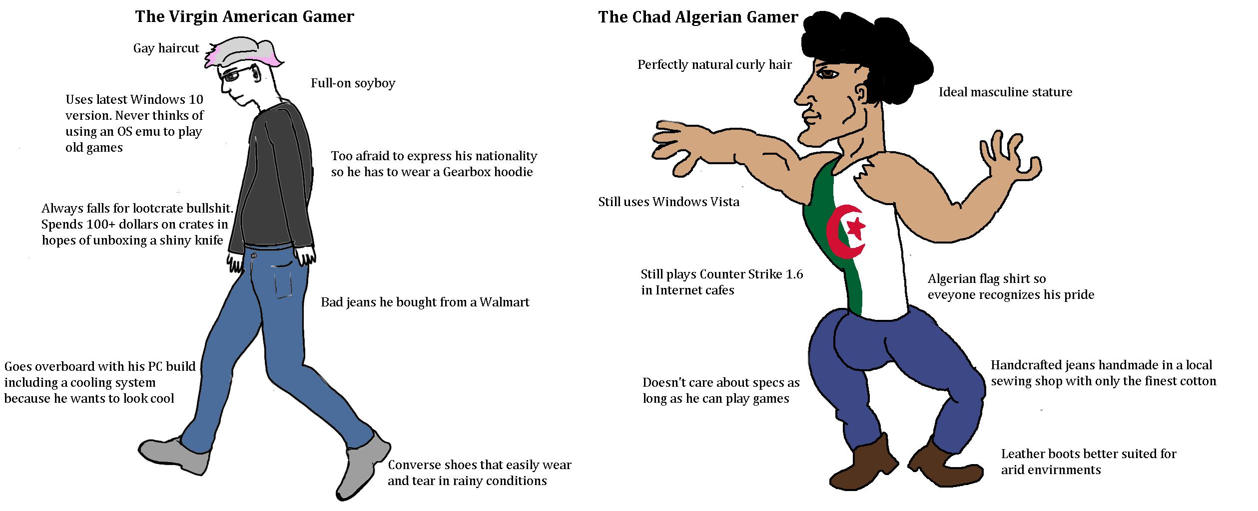 The Virgin American Gamer vs The Chad Algerian Gamer ...