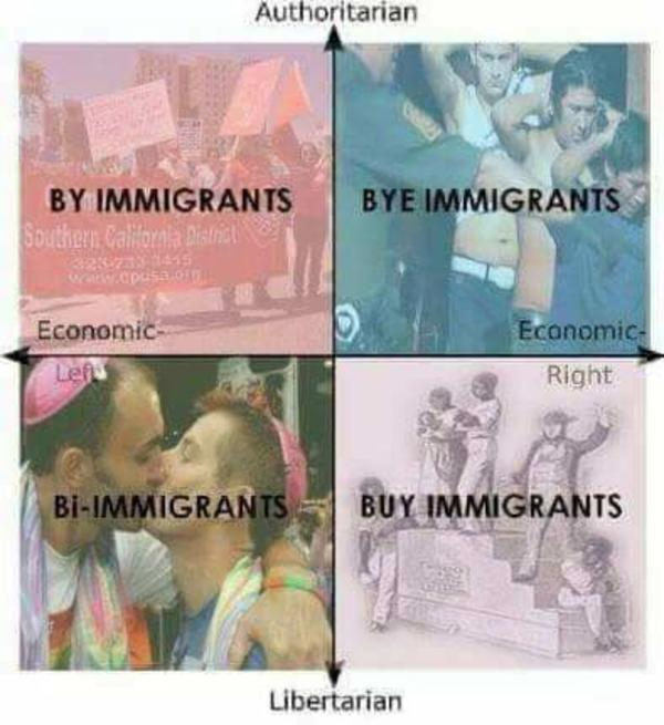 Essay: Immigration in the United States