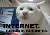 The Internet is Serious Business