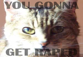 You Gonna Get Raped