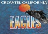Daily Crow