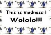 Wololo
