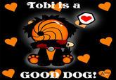 Tobi's a good boy