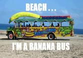 Bitch I'm a Bus
