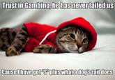 Kitty Gambino