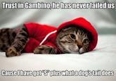 Kitty Gambino