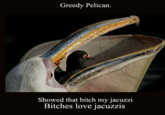 Uncle Ray/Pedo Pelican/Greedy Heron