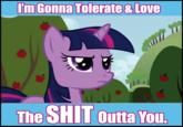 Pony Haters