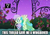 Wingboner & Clopping